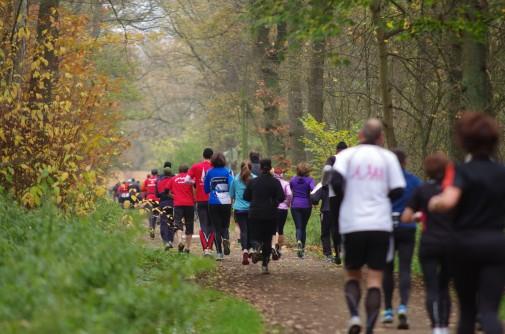 Starterrekord, Bestzeiten, gutes Laufwetter: Der Bothfelder Waldlauf war ein voller Erfolg. Foto: Stephan Fabig / quick-flash.de
